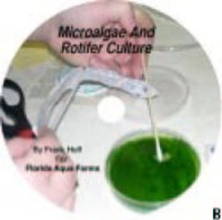 Microalgae and Rotifer Culture